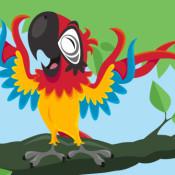anna-hancock-animal-parrot