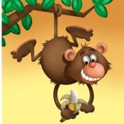 pete-beard-animals-monkey