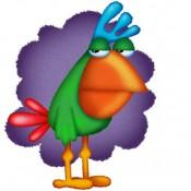 terry-gaylor-publishing-bird