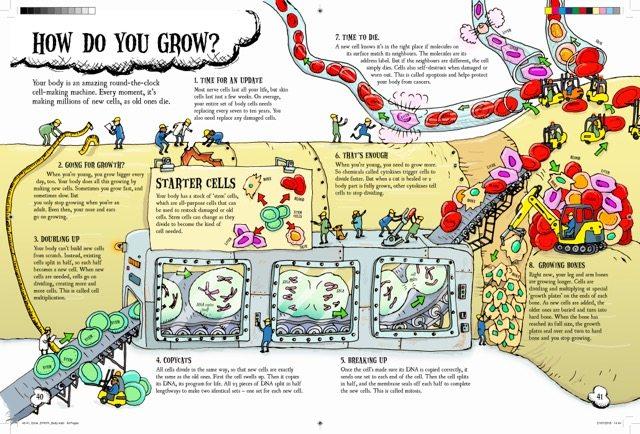 tim-hutchinson-grow