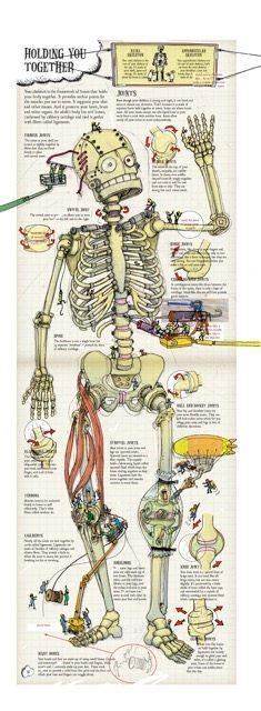 tim-hutchinson-skeleton